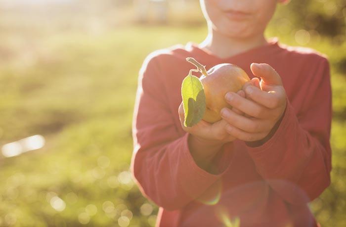 Boy in sun with apple