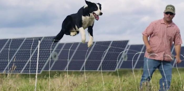 Watching solar energy videos is a great way to learn about this clean renewable energy.