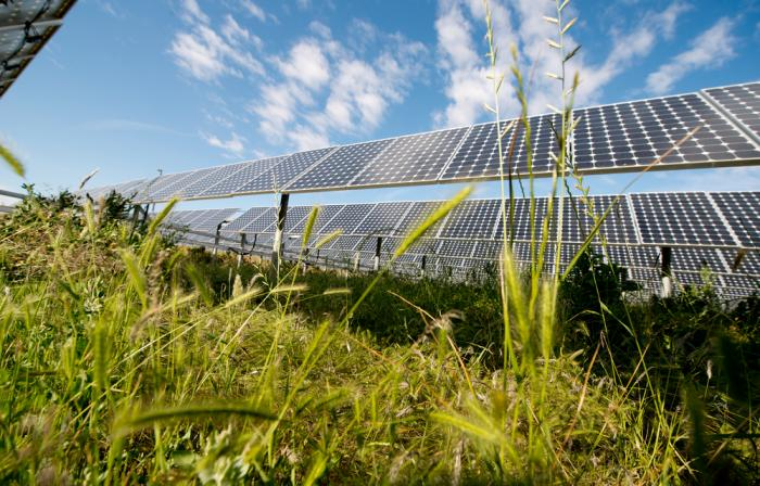 SunPower ranks No. 1 among solar companies for its safe, sustainable manufacturing practices.